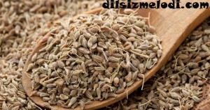 sindirim sistemi, anason tohumları, kataraktın tedavisi