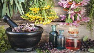 tibbi bitkiler, aromatik bitkiler, tıbbi bitkilerin kullanımı